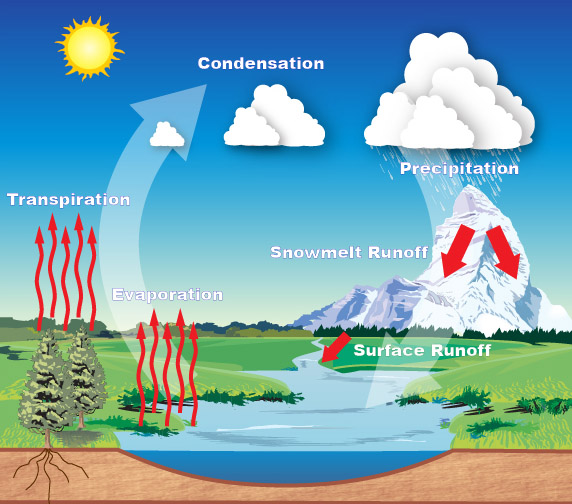 Hydrologic Cycle Graphic